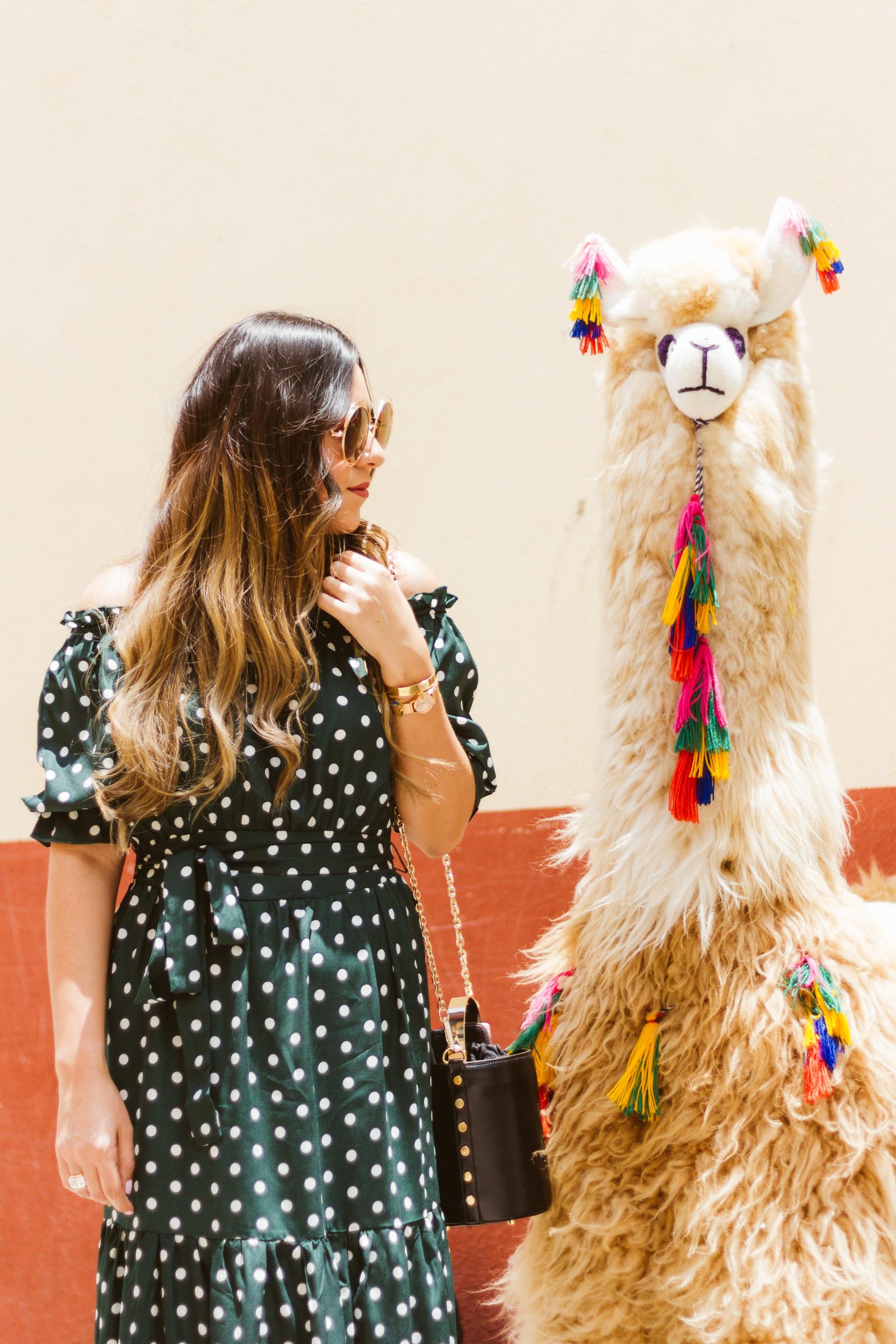Blogger de viaje México